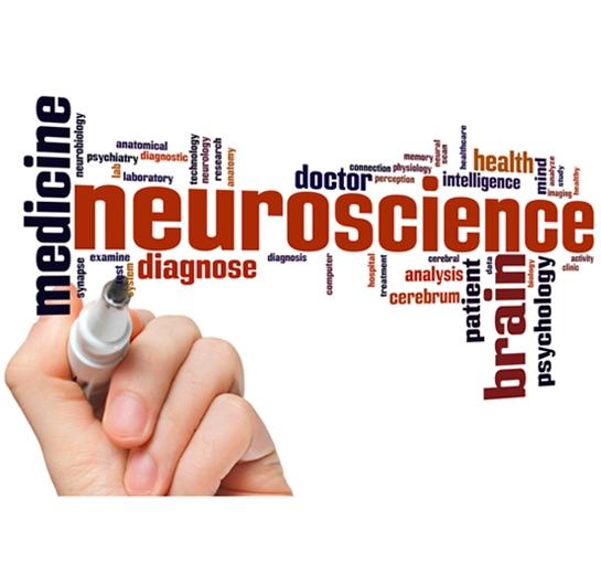 neuroscienze-medicina-dell-essere
